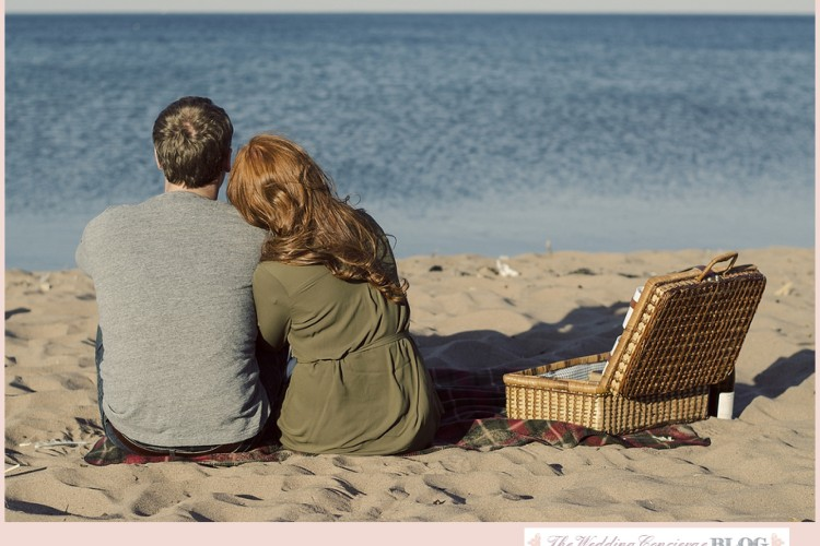 A Picnic at the Beach – Minnesota Engagement Shoot