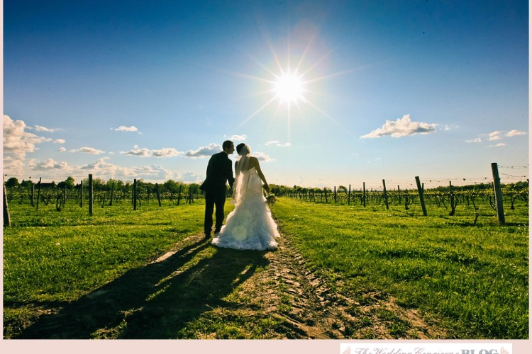 Casa Larga Vineyard Wedding